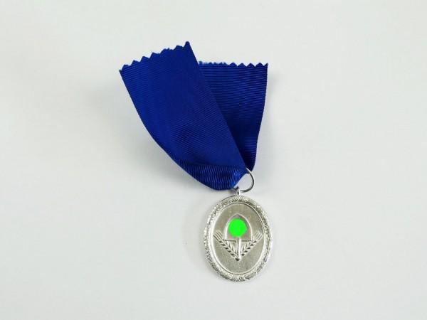 Service award for the Reichsarbeitsdienst level silver